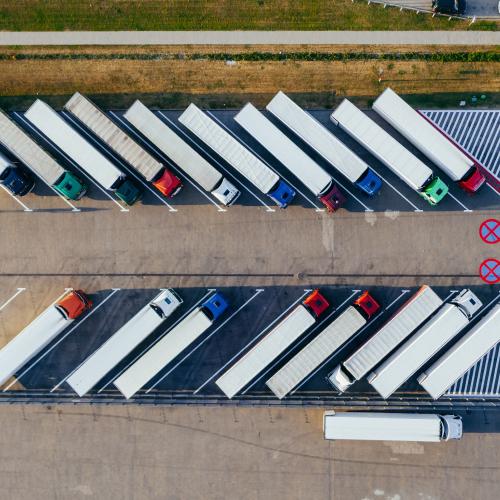 Pilno kravu pārvadājumi