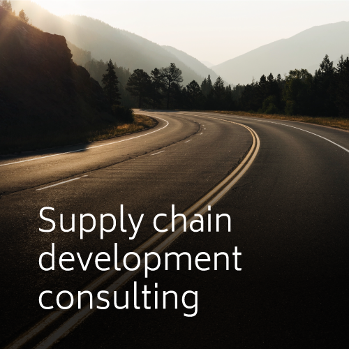 Supply chain development consulting